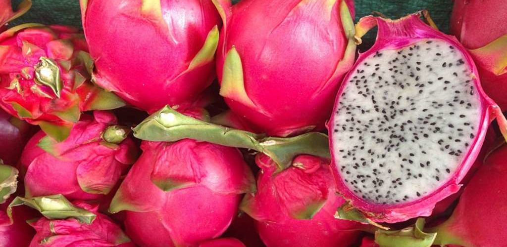 Beneficios de la Pitahaya.