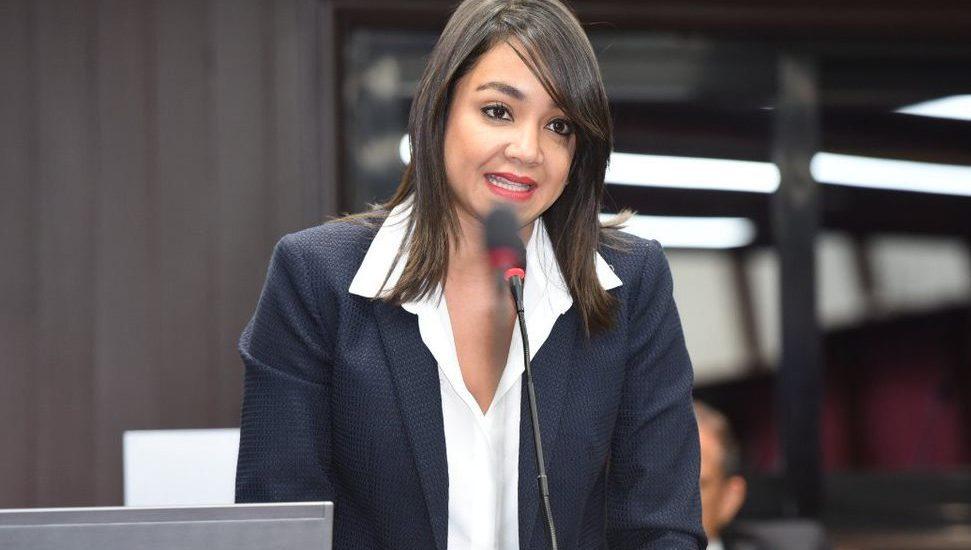 Photo of Faride Raful denuncia diputados aprobarán otro préstamo millonario por $7 MIL MILLONES