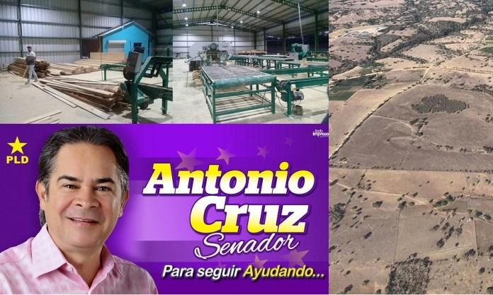 Photo of Senador del PLD tiene aserradero dentro de Parque Nacional, encabeza mafia deforestadora con permiso de Medio Ambiente