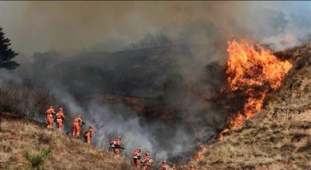 Photo of Al menos 26 bomberos mueren al intentar apagar un incendio en China