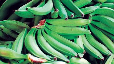 Photo of Mangos y plátanos verdes podrían ayudar a prevenir el cáncer de colon