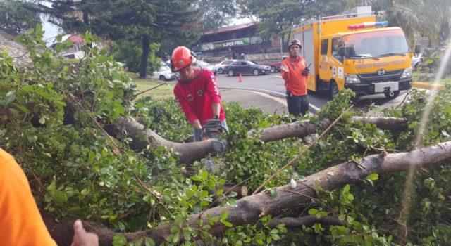 Photo of Fuertes lluvias y ventarrones afectan más de 370 viviendas en Santiago