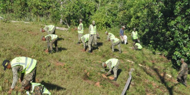 Ejército realiza amplia jornada de reforestación en Villa Altagracia