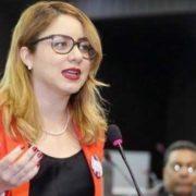Diputada dice PLD no ha sabido desligar función del Estado de la politiquería