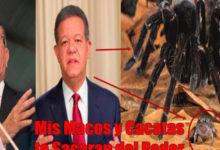 Photo of Leonel Fernandez Responde a Danilo y Le dice que su Alianza de Macos y Cacatúas Sacaran del Poder a su Banda de Saqueadores del Estado.