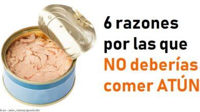 Photo of 6 razones por las que deberías eliminar el Atún de tus comidas