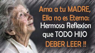 Photo of AMA A TU MADRE, ELLA NO ES ETERNA: HERMOSA REFLEXION QUE TODO HIJO DEBER LEER !!