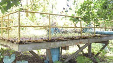 Photo of El INAPA anuncia reconstrucción acueductos en San Cristóbal y Samaná